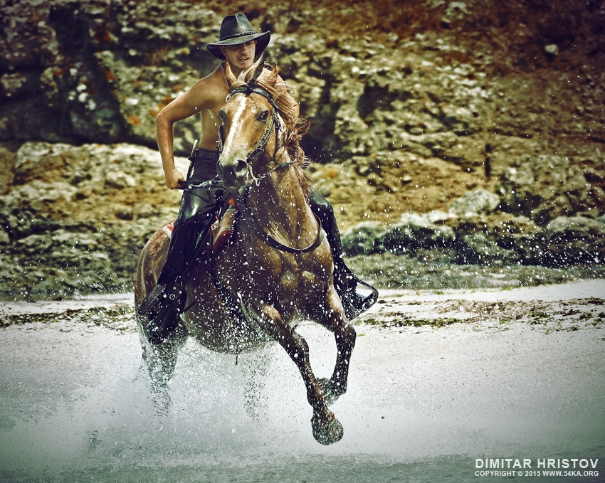 water horse rider 001 :: Water Horse Rider :: photography index animals