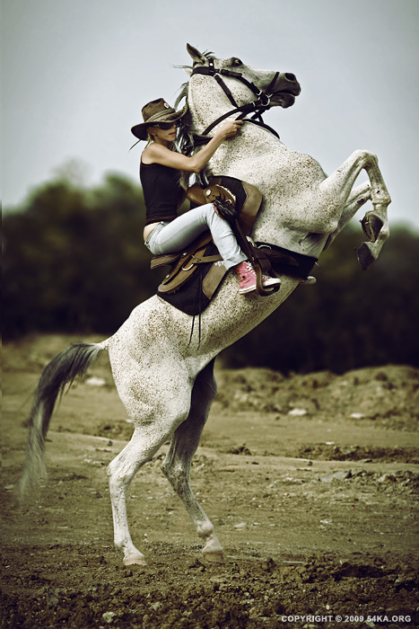 rider 019 by 54ka :: Horse Rider XI :: photography other index animals