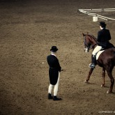 Dressage Horse Riding