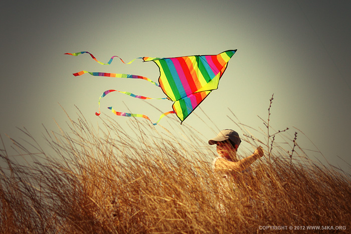 sunset kite 01 by 54ka :: Sunset Kite :: other