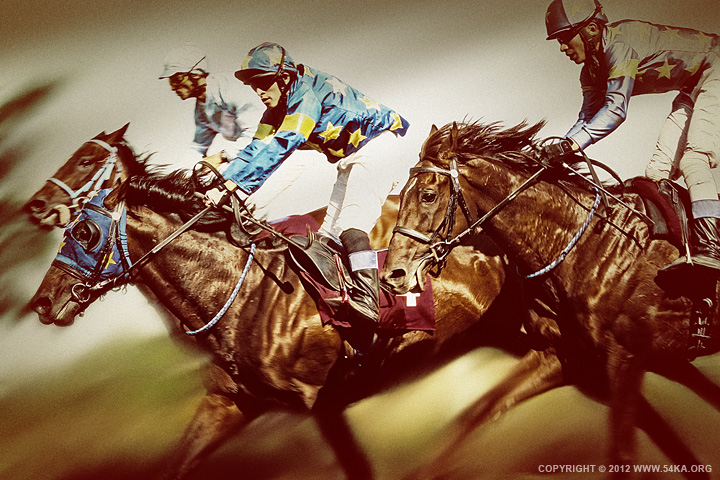 horse racing ii 01 by 54ka :: Horse Racing II :: photography animals