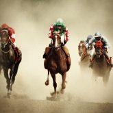 Racing Horses I