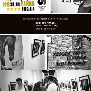 "Exhibition ""Horses"" in 6th International Photographic Salon – Varna 2013"