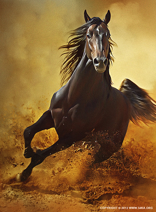 Galloping Horse at Sunset in Dust photography photomanipulation best of animals  Photo