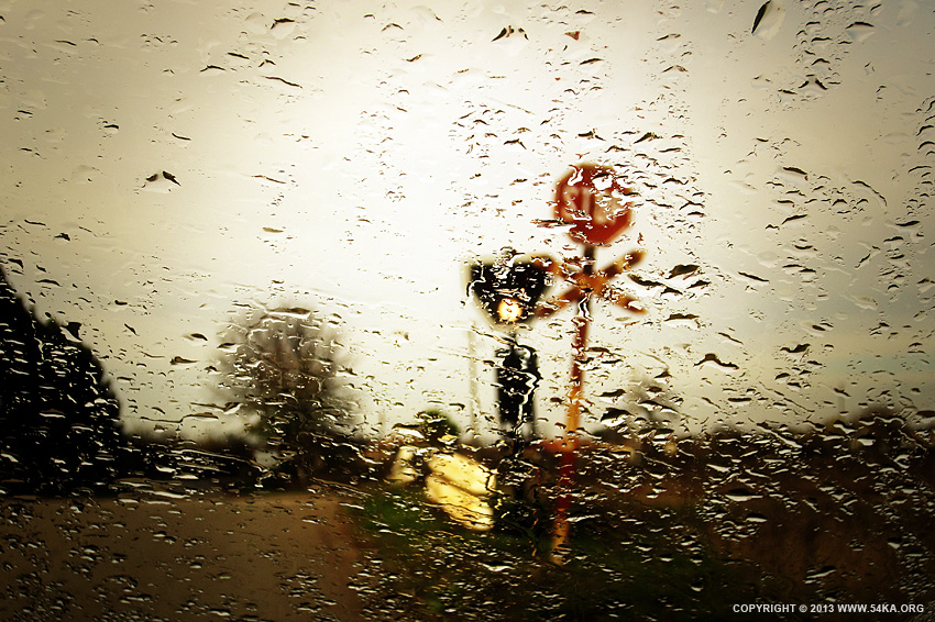 One Rainy Autumn Day photography other landscapes featured  Photo