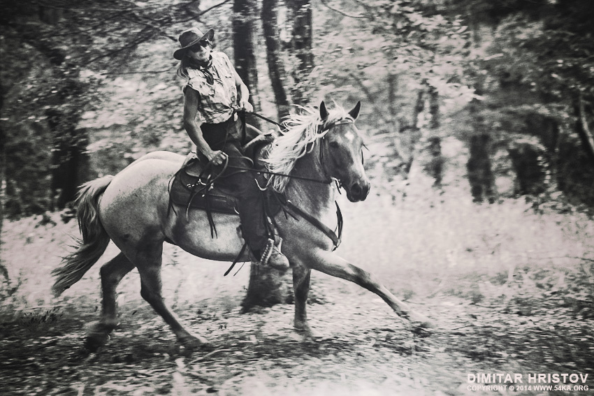 Cowboy Woman Riding in The Forest photography portraits equine photography black and white animals  Photo