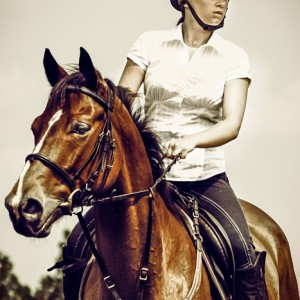 Girl jockey on purebred brown horse