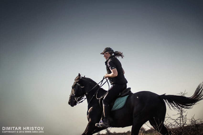 Woman riding galloping horse at dusk photography featured equine photography animals  Photo