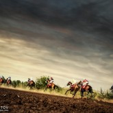 Running horses competition on the stormy sky