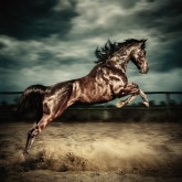Beautiful wild stallion jumping in dust – equestrian photography on the stormy sky