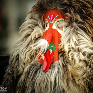 Unidentified man in traditional Kukeri costume – Bulgarian traditional ritual