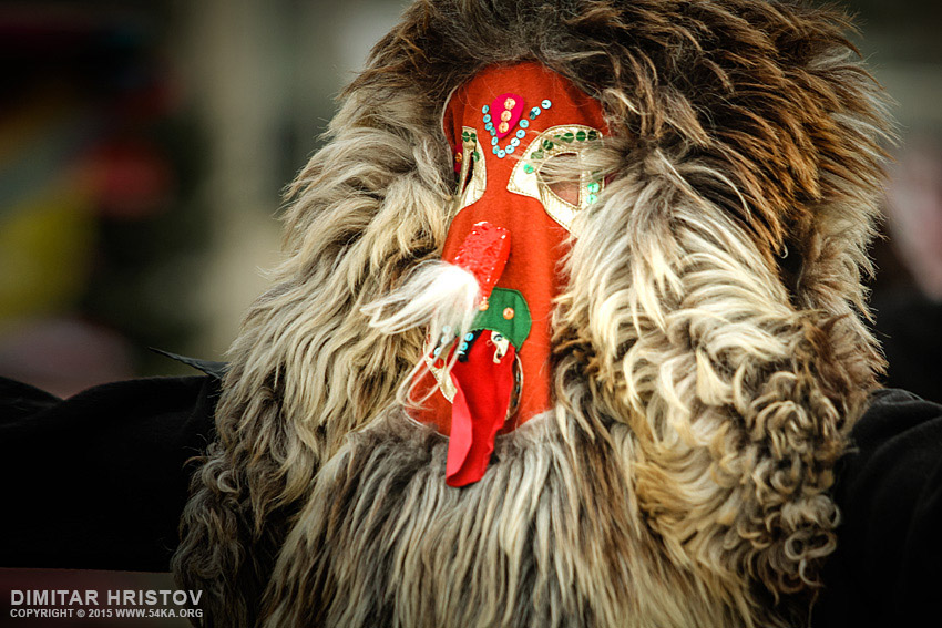 Unidentified man in traditional Kukeri costume   Bulgarian traditional ritual photography portraits other top rated featured  Photo