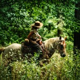 Woman riding horse in the forest