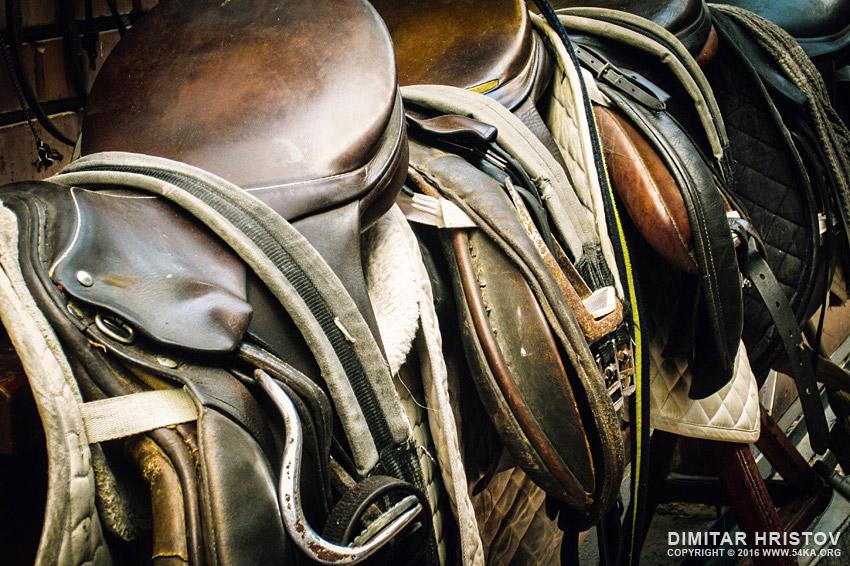 Horse saddle photography other equine photography  Photo