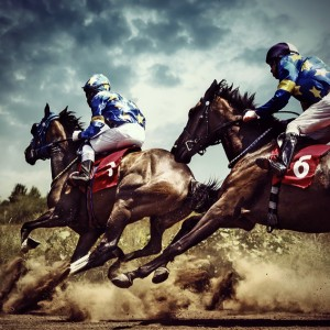 Gambling horses – horse competition