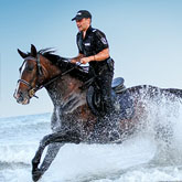 Policeman riding fast horse in the water