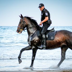 Policeman riding horse in the water on the beach