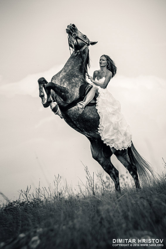 Bride riding horse photography equine photography black and white animals  Photo