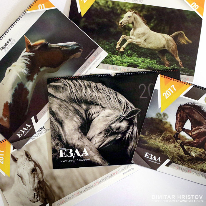 Ezda magazine   Calendar 2017 photography news  Photo
