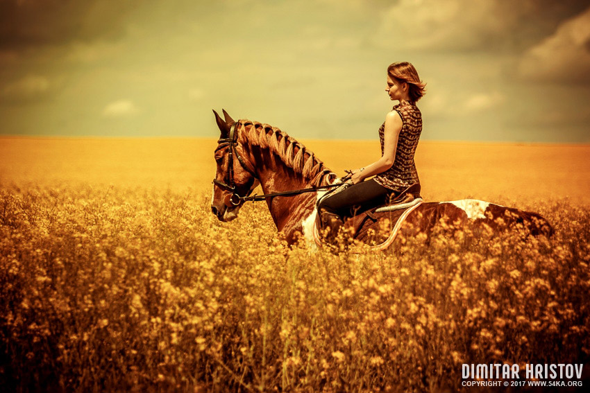 Beautiful girl riding horse at the field photography portraits featured equine photography  Photo