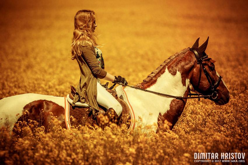 Cowboy Riding Horse On Field - 54ka [photo blog]