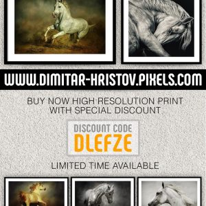 High resolution print with special discount