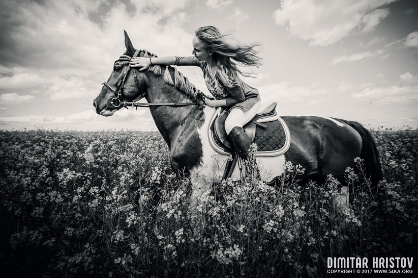 Horse riding in meadow   Girl portrait photography portraits top rated featured equine photography black and white  Photo