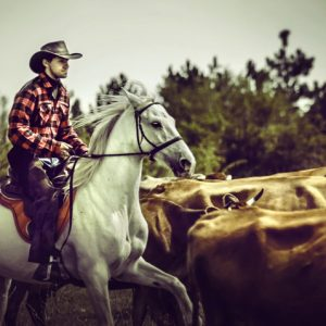 Wild West Cowboy – Cattle Drive – Equestrian photography by Dimitar Hristov