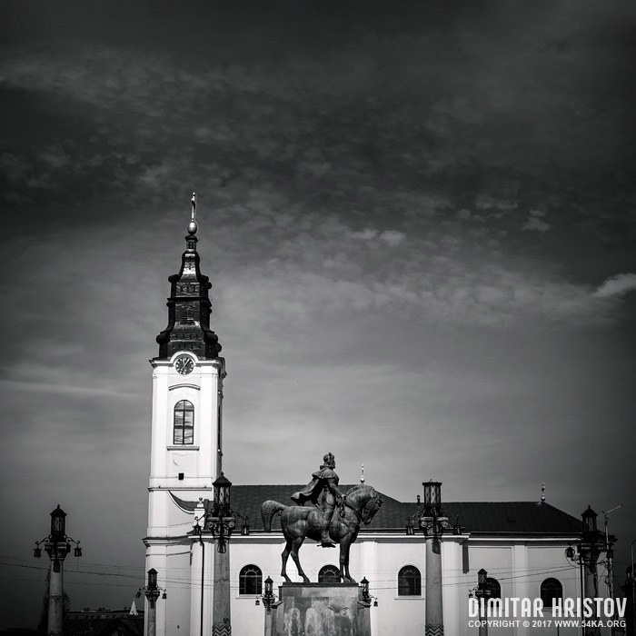Equestrian statue of Mihai Viteazul at Piata Unirii in Oradea, Romania photography urban black and white  Photo