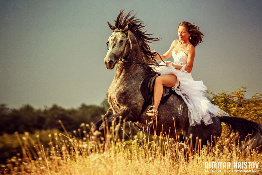 Woman riding wild horse photography top rated featured equine photography animals  Photo