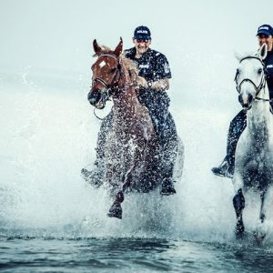 Police officers riding horses on the beach – Video