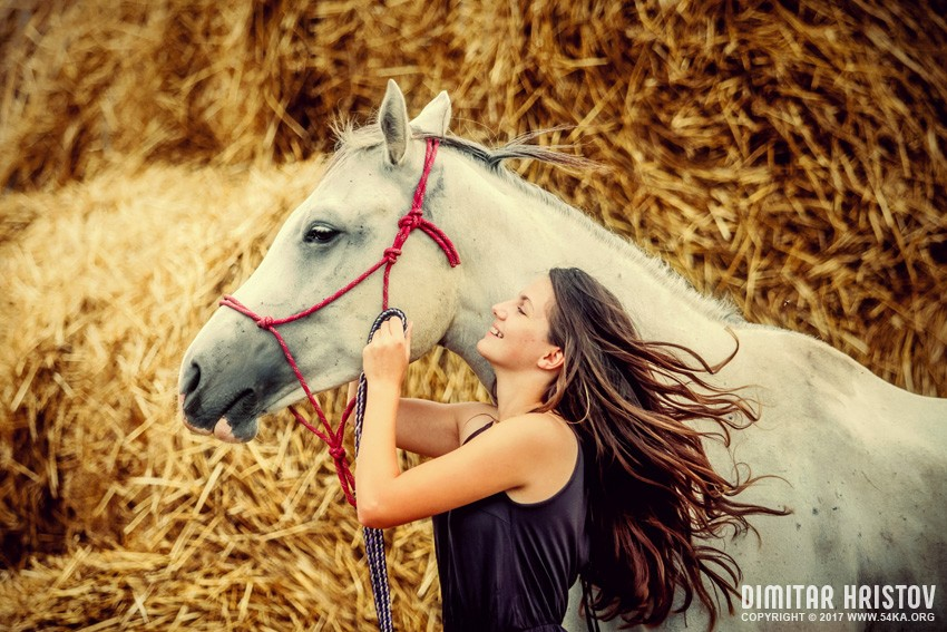 Beautiful girl with long hair with a horse photography portraits top rated featured equine photography animals  Photo