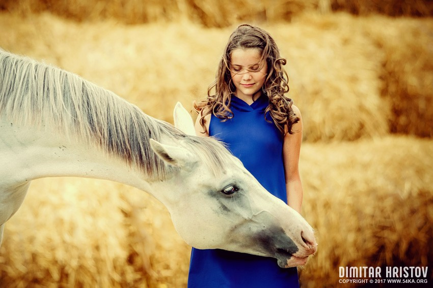 Happy girl with horse photography portraits featured equine photography animals  Photo