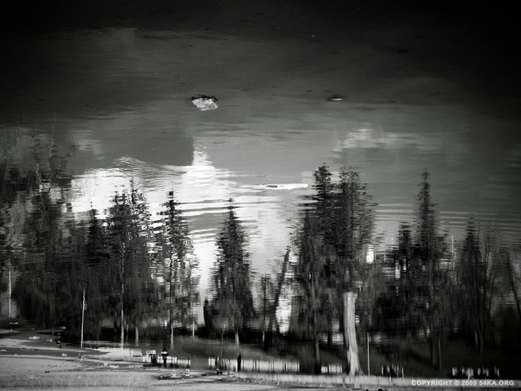Natures Mirror photography landscapes daily dose black and white  Photo