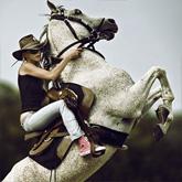 Horse Rider XI