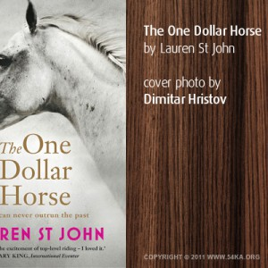"""The One Dollar Horse"" Cover photo by Dimitar Hristov"