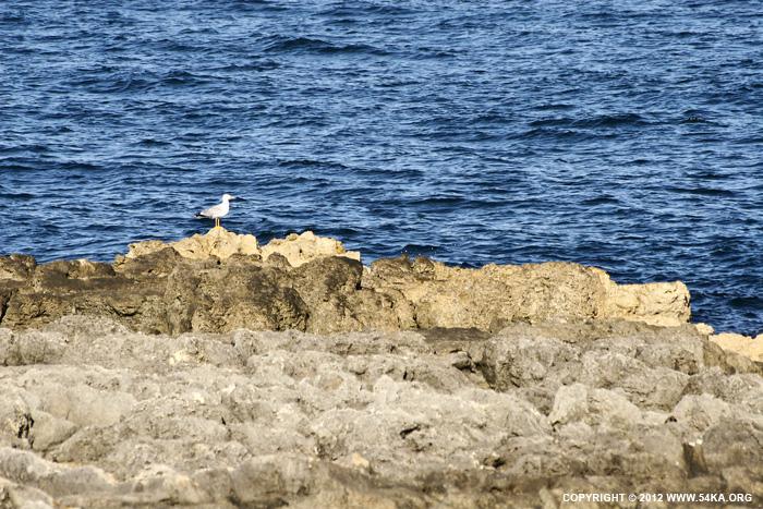 Seaskype photography landscapes  Photo