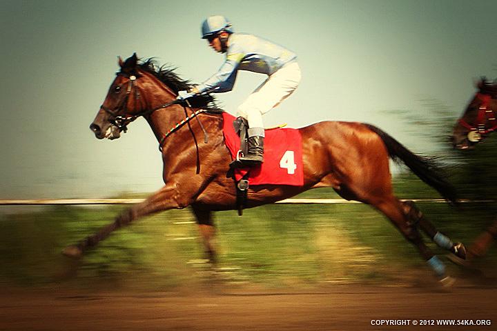 Girl riding paint horse - 54ka [photo blog]