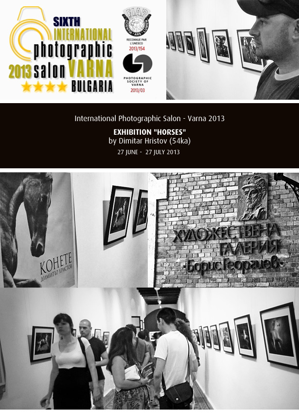 Exhibition Horses in 6th International Photographic Salon   Varna 2013 54ka news  Photo