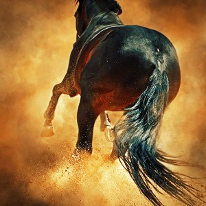 Hooves Of Flaming Horse