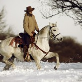 Winter Ride On The White Horse