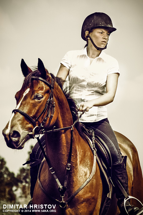 Girl jockey on purebred brown horse photography portraits equine photography daily dose animals  Photo