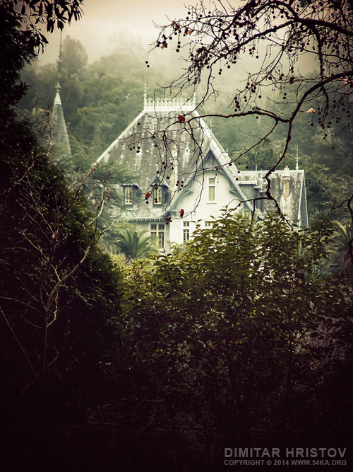 House In The Wood photography other landscapes featured  Photo