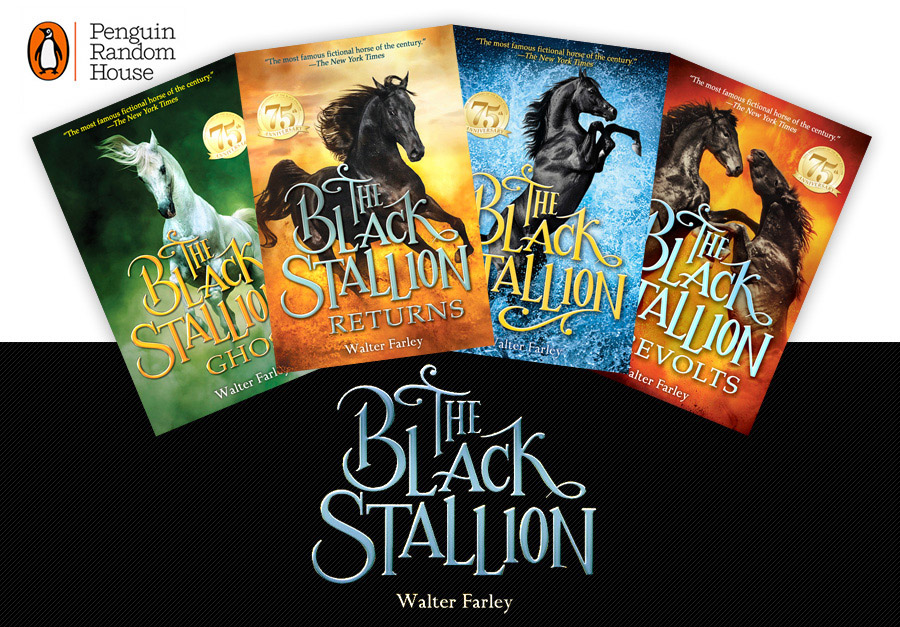 The Black Stallion covers by Dimitar Hristov   54ka photography 54ka news  Photo