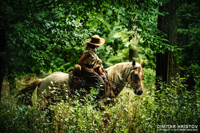 Woman riding horse in the forest photography top rated featured equine photography animals  Photo