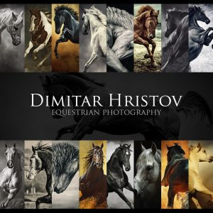 Dimitar Hristov – Equestrian photography – Behind the scenes
