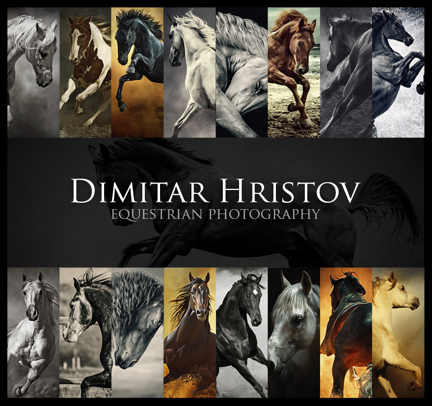 Dimitar Hristov   Equestrian photography   Behind the scenes photography backstage  Photo