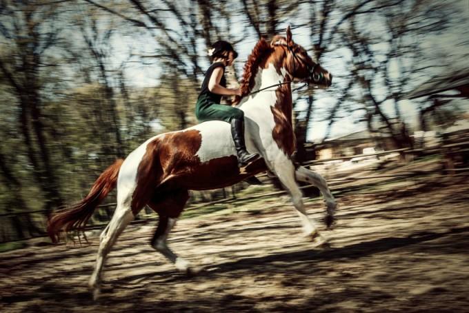 Water Horse Rider III - 54ka [photo blog]