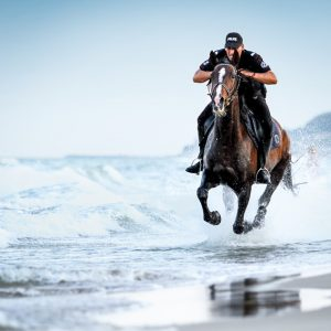 Black police horse running in the sea