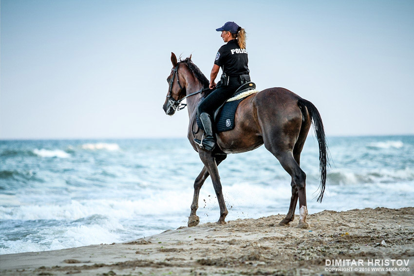 Policewoman riding horse on the beach photography featured equine photography animals  Photo